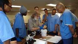 Professor Charles Gross, San Quentin inmates, and a sheep brain!