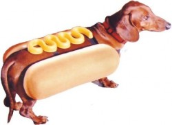 hot-dog-costume5