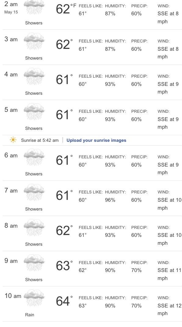 "Preview of ""Hourly Weather Forecast for Princeton - weather.com"""